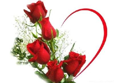 Ý nghĩ Hoa hồng ngày lễ Tình Yêu
