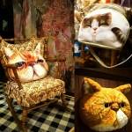 Cafe mèo Bangkok – Thiên đường cho người yêu mèo khi đi du lịch Thái Lan