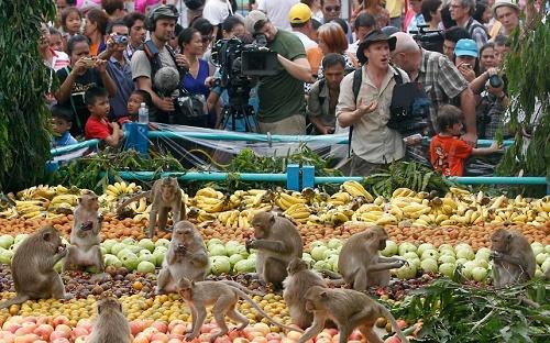 Hàng trăm loại bánh kẹo, hoa quả và nước ngọt được bày ra cho các chú khỉ