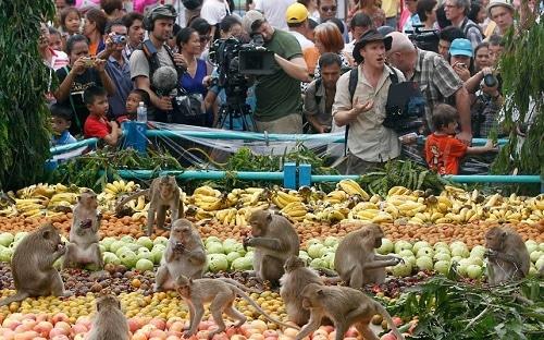 Độc, lạ lễ hội Monkey Buffet ở Thái Lan