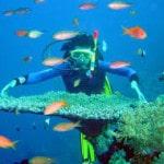 Du lịch Cát Bà lặn biển khám phá biển đảo Cát Bà