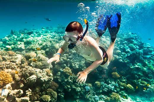 Nước biến trong vắt chính là điều kiện thuận lợi để du khách lặn biển ngắm san hô