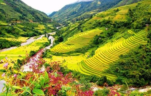 Nét mộng mơ ở thung lũng Mường Hoa