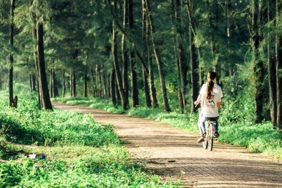 Khung cảnh thơ mộng tuyệt đẹp trên con đường tình yêu