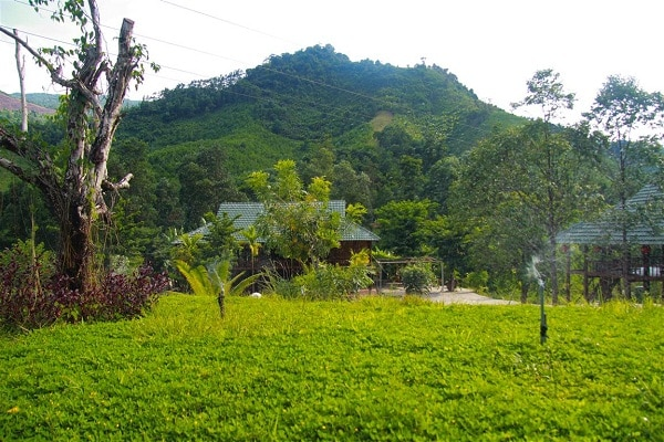 Khung cảnh thiên nhiên trong lành mát mẻ tại khu du lịch