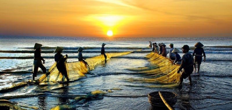 Khung cảnh đánh cả trên biển Mỹ Khê