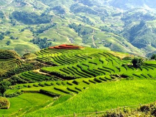 Vẻ đẹp của núi rừng Mai Châu