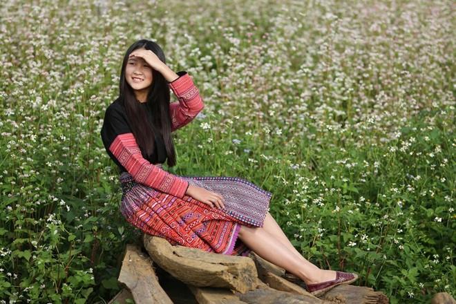 Ngỡ ngàng ngắm hoa tam giác mạch nở rộ tại Mộc Châu