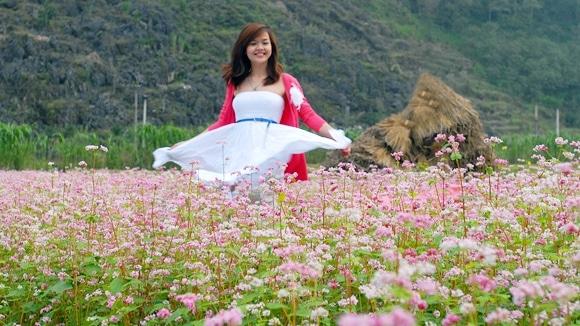 Ngày nay, những cánh đồng hoa tam giác mạch ngày càng hút hồn nhiều du khách tham quan