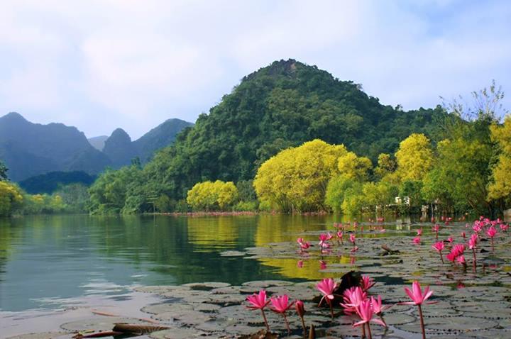 Image result for sắc thu chùa Hương