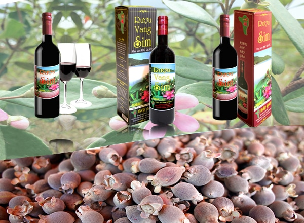 4 sản phẩm hấp dẫn du khách tại hòn đảo xinh đẹp Phú Quốc