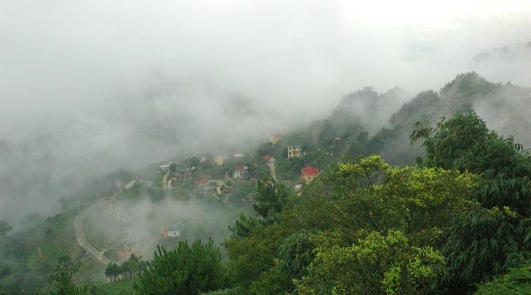 Tam Đảo bao phủ trong sương mù những ngày đầu đông