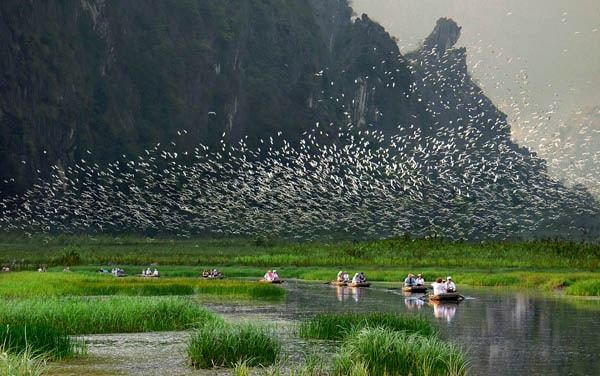 4 địa điểm du lịch cực kỳ hấp dẫn tại Ninh Bình
