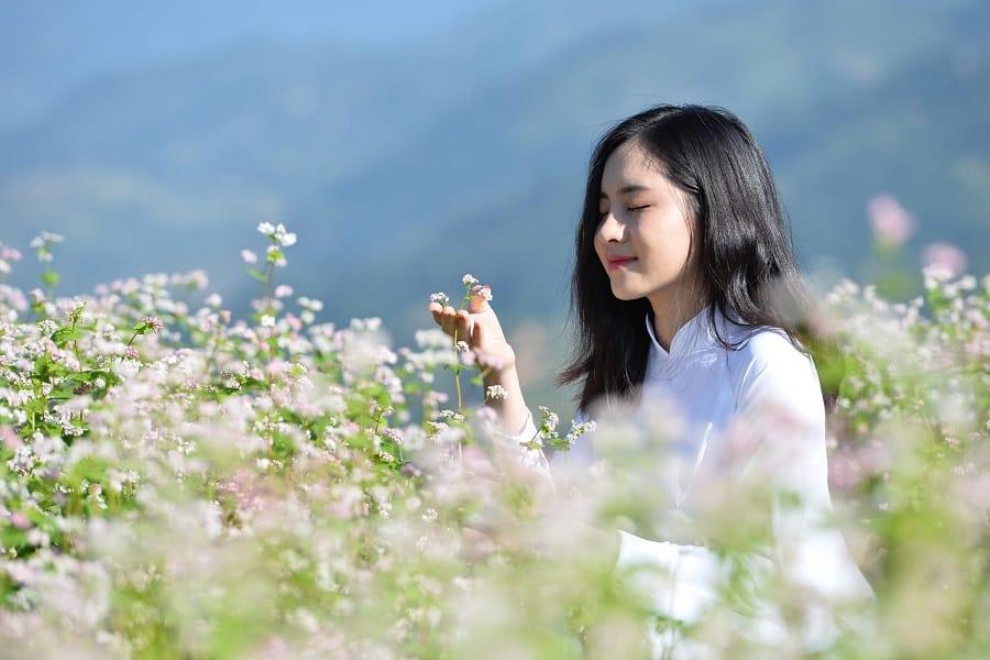 Hà Giang là điểm sống ảo tuyệt đẹp cho mọi đối tượng