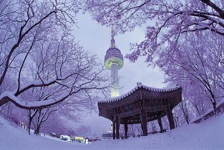 thap-namsan-vao-dong