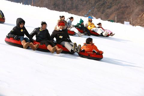 Kinh nghiệm đi trượt tuyết tại Yangji Pine xứ Hàn