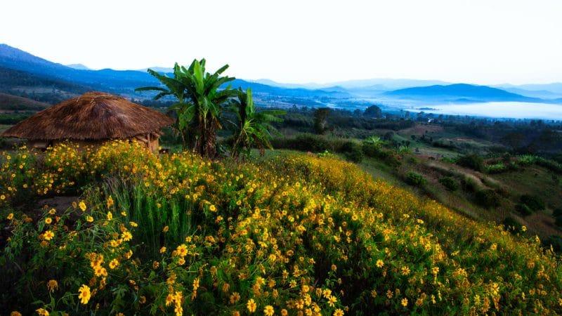 Vẻ đẹp trong lành, thơ mộng ở thị trấn Pai