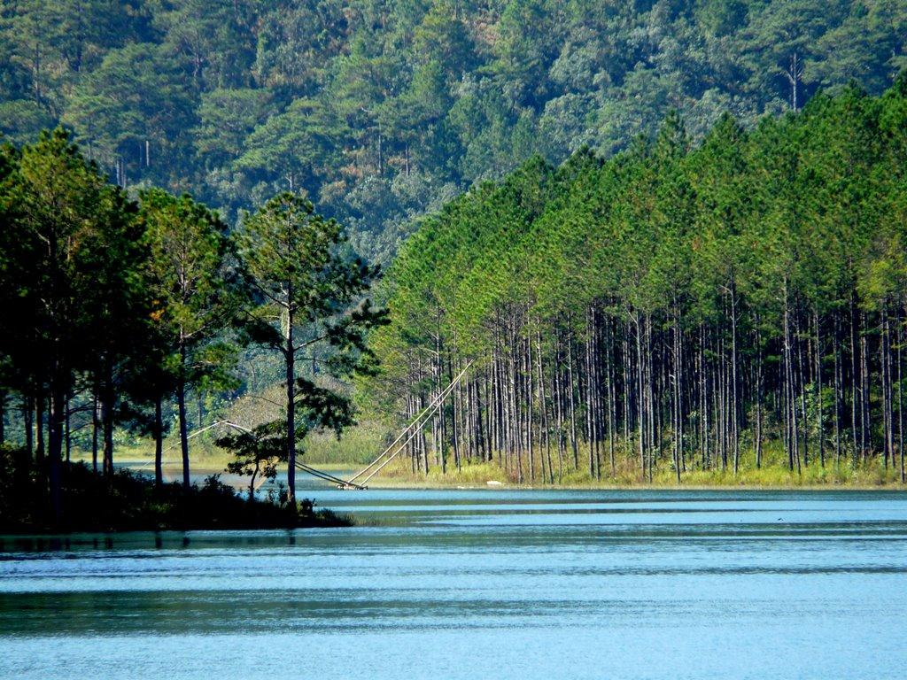 Hồ Tuyền Lâm Đà Lạt