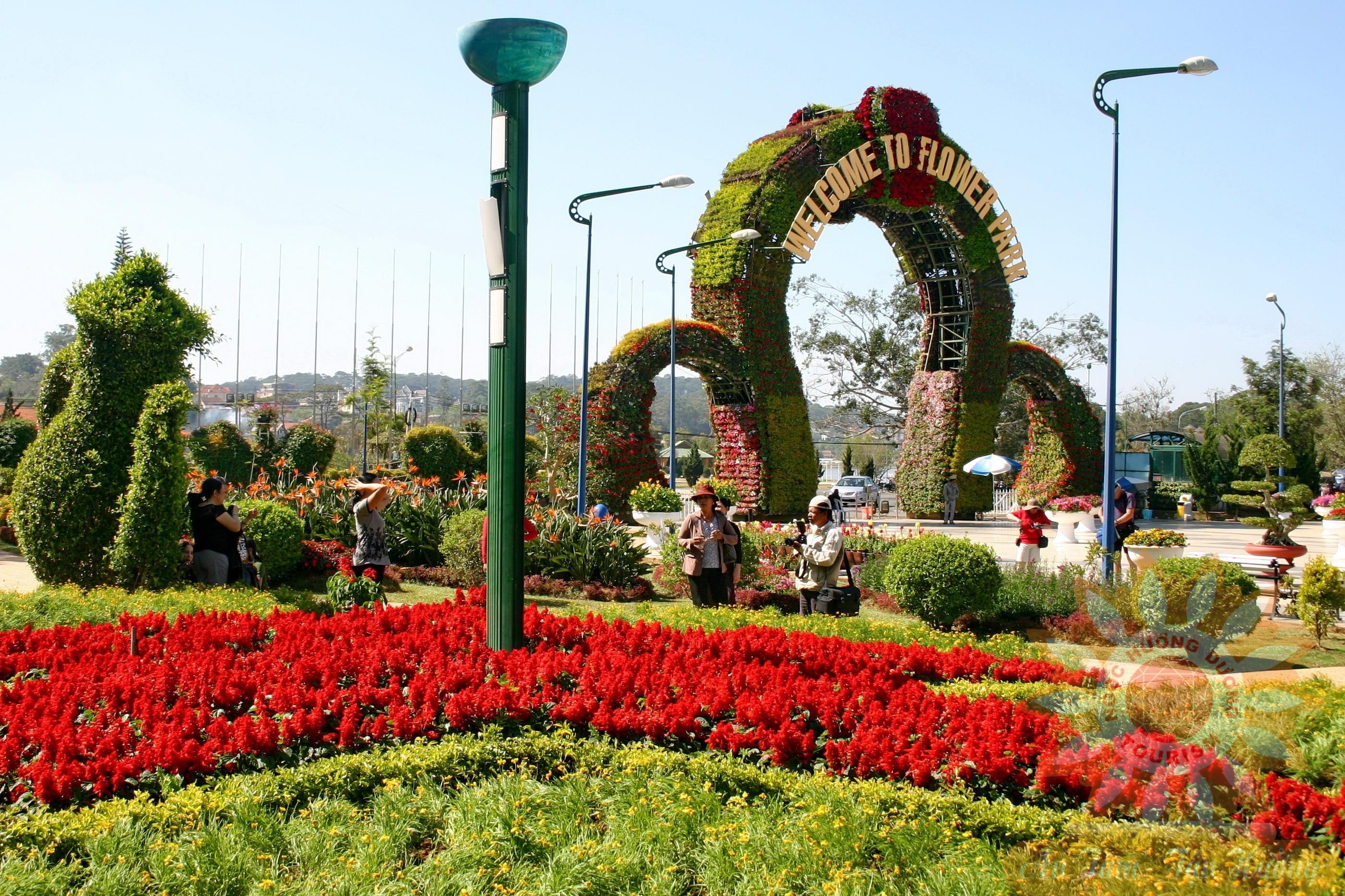 Rực rỡ sắc màu vườn hoa Đà Lạt