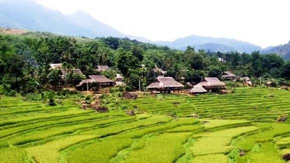 Tour Mộc Châu – Mai Châu – Pù Luông 3 ngày giá rẻ