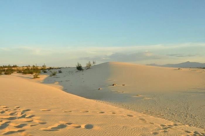 Vẻ đẹp hoang sơ của đồi cát Quang Phú