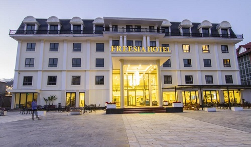 freesiahotel