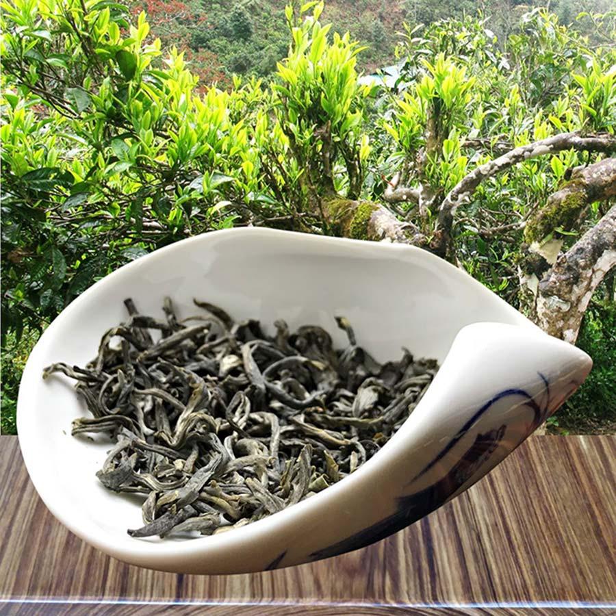 Chè Shan Tuyết - đặc sản nổi tiếng xứ tam giác mạch