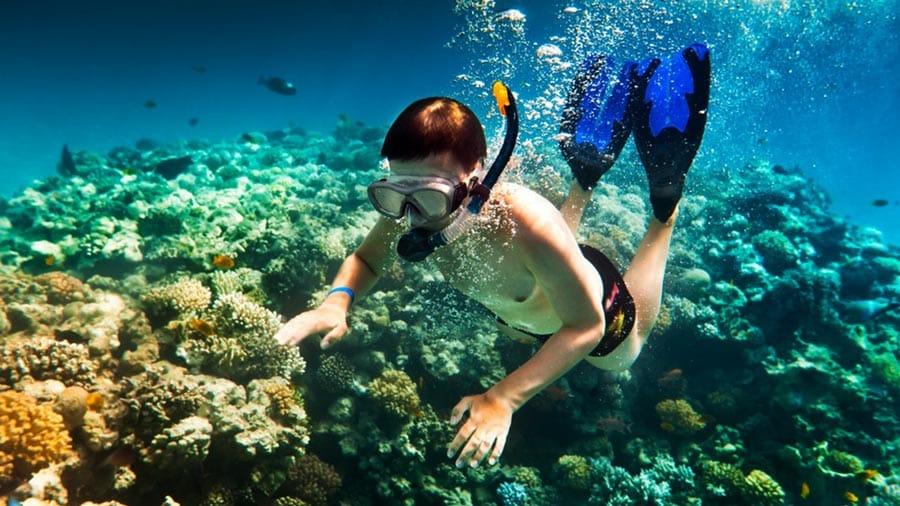 Lặn biển tại Phú Quốc là trải nghiệm vô cùng đáng nhớ