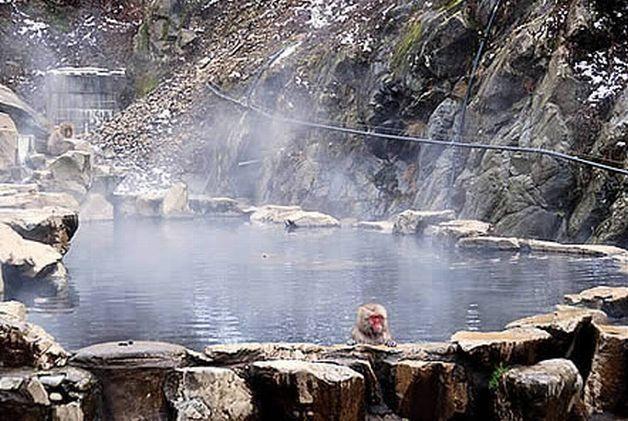 Đi du lịch Quảng Bình nên đi đến suối nước nóng Bang ấm áp