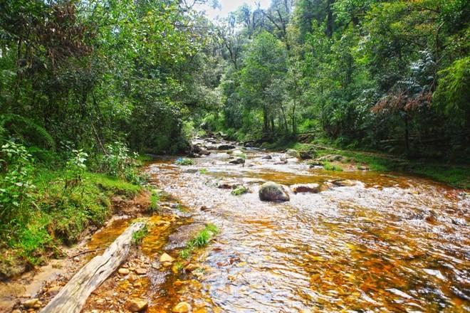 Suối Vàng -điểm du lịch hấp dẫn mang vẻ đẹp kỳ bí ở Sapa