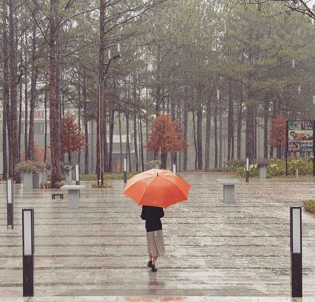 Cơn mưa ở Đà Lạt cũng nhẹ nhàng đến thế!