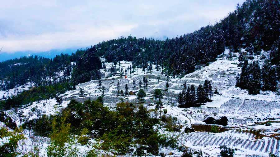 Đỉnh Hàm Rồng tuyết trắng bao phủ
