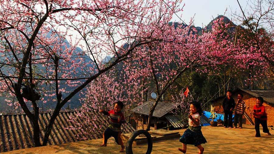 Mùa xuân tươi đẹp tại các bản làng Sapa