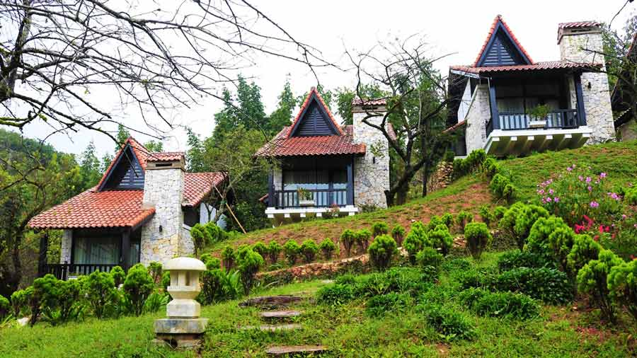 Plum Garden Villa trong lành