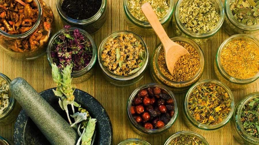 Du lịch Sapa đừng quên mua thảo dược Sapa bổ dưỡng
