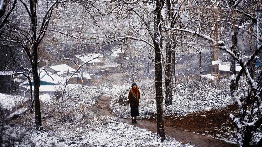 Thức giấc vào buổi sáng để cảm nhận khung cảnh Sapa tuyết rơi tuyệt đẹp