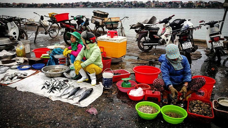 Chợ hải sản tại chợ Đồng Hới Quảng Bình