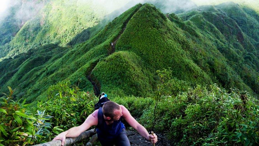 Trekking khám phá rừng nguyên sinh là trải nghiệm đáng nhớ cho chuyến du lịch