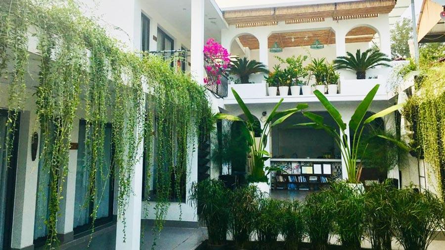 Coto Eco Lodge đem lại những trải nghiệm đáng nhớ cho khách du lịch