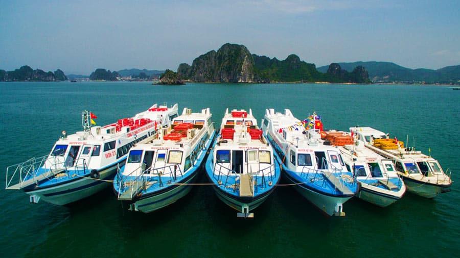 Tàu cao tốc đi Cô Tô hiện đại, tiện nghi và an toàn