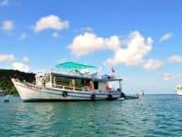 Tàu cao tốc đi Cô Tô - Lựa chọn lý tưởng tiết kiệm thời gian ra đảo Cô Tô