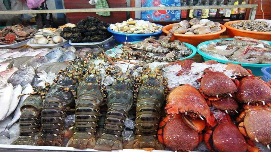 Hải sản tươi sống bán ở chợ chủ yếu được đánh bắt gần bờ