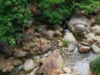 Suối Lương Đà Nẵng