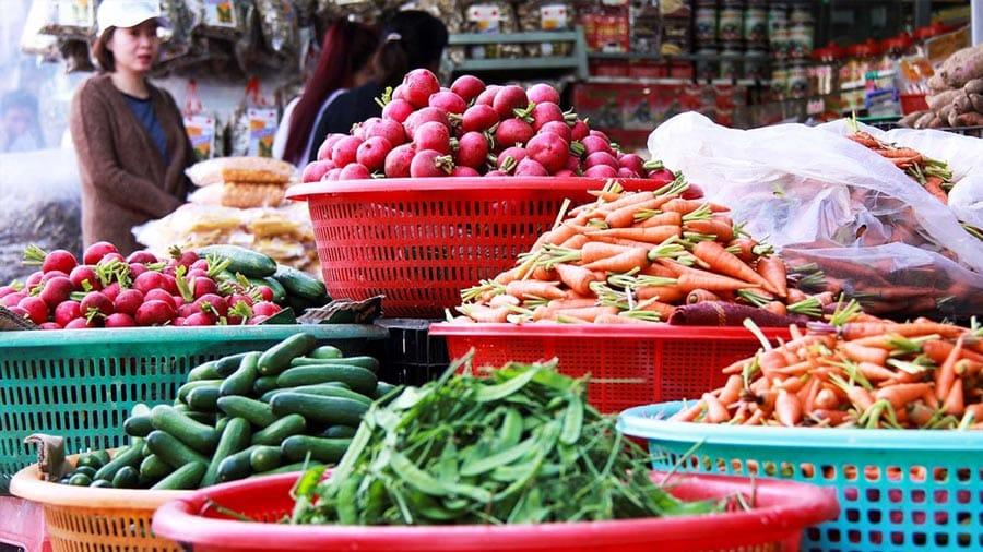 Các loại rau củ quả được bà con trồng và thu hoạch trực tiếp trên đảo Cát Bà