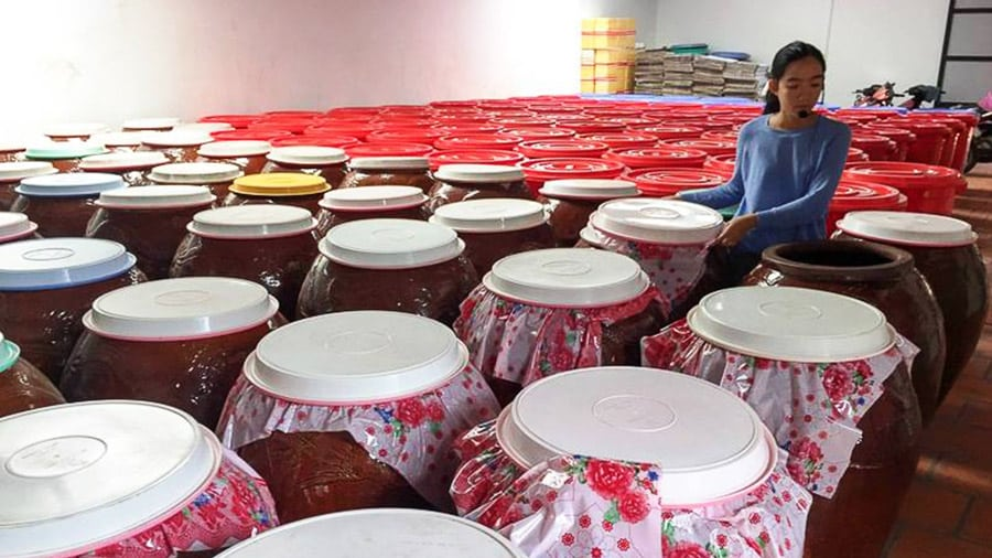 Rượu sim Phú Quốc được ngâm trong vại lớn