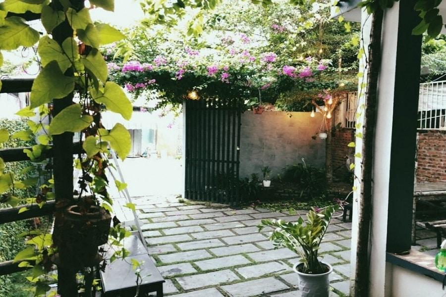 Không gian xanh lãng mạng D – Green Hostel Homestay