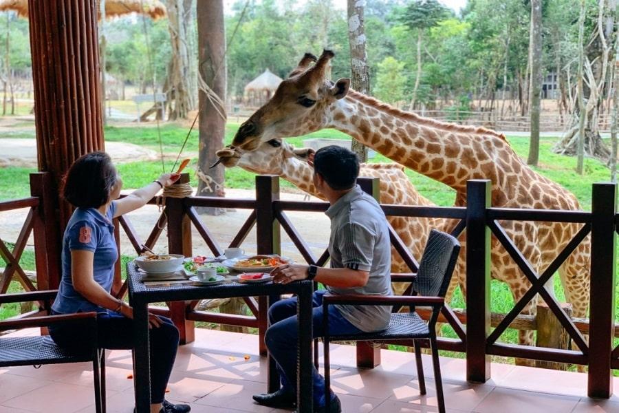 Open Zoo - vườn thú phong phú