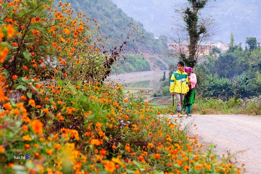 Du lịch các huyện của Hà Giang có gì nào?