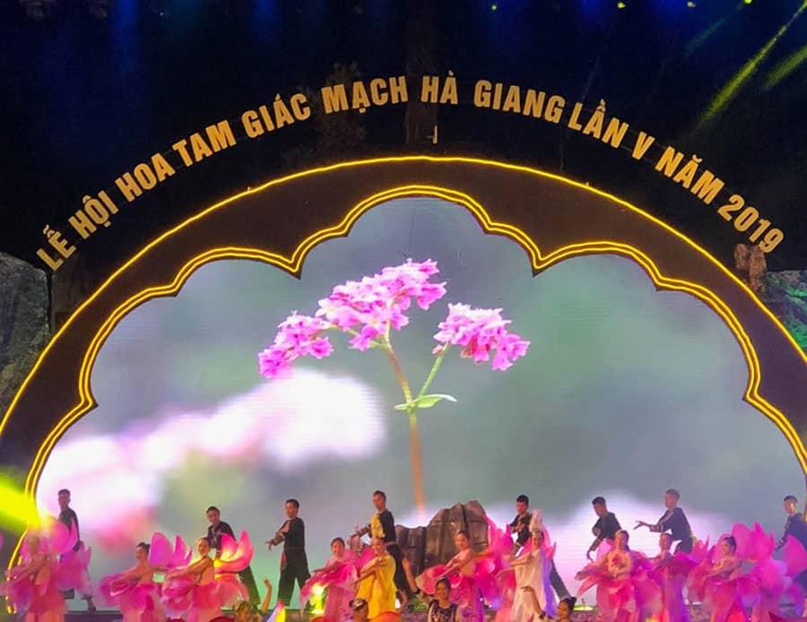 Lễ hội hoa tam giác mạch được tổ chức hàng năm