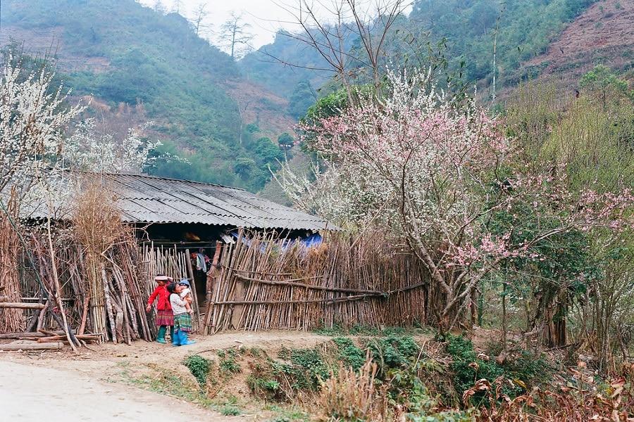Phố Cáo Hà Giang – một nét đẹp khác của Đồng Văn